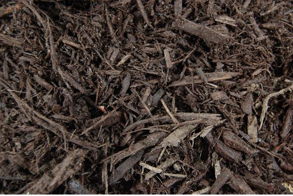 Enhance bark (black or brown)